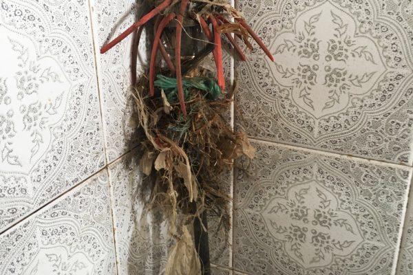 Escova coberta de lixo que se encontrava na conduta da chaminé.